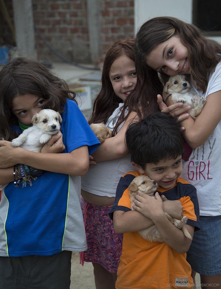 Puppy love in San Vicente