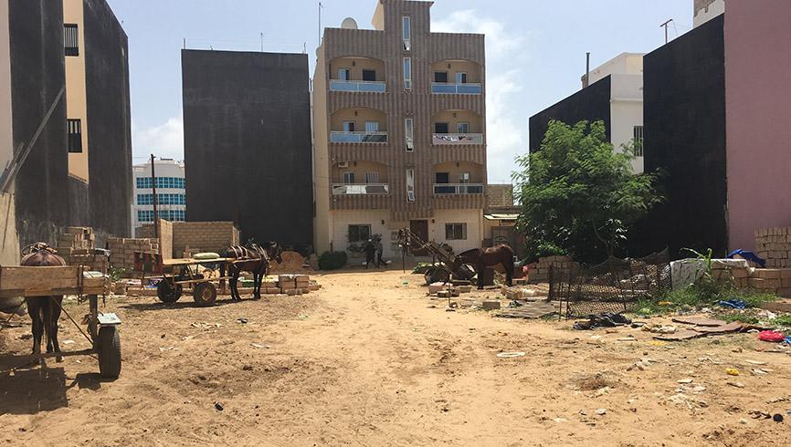 African housing development